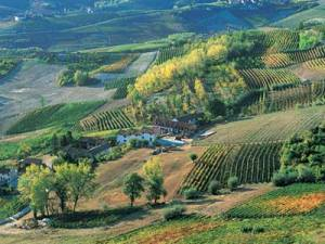 The Piedmont region is noted for its wine and cuisine